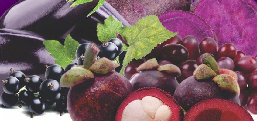 "Hasil Pengmas ""Sayuran dan Buah Berwarna Ungu untuk meredam Radikal bebas"""